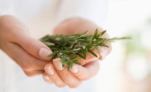 Sedef Hastalığına İyi Gelen Bitkiler